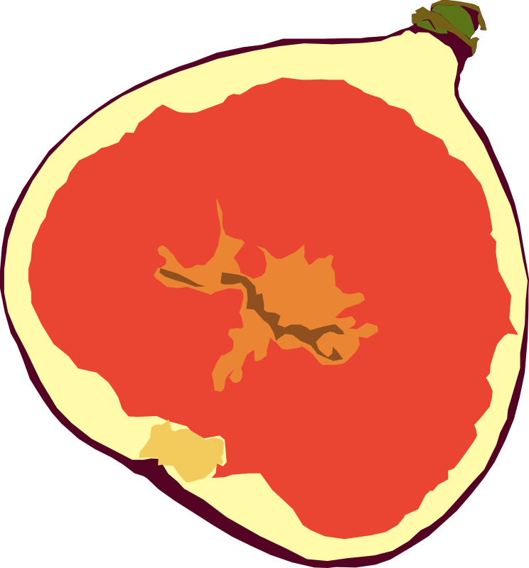 Fig by gingercoons - A cross-section of a fig