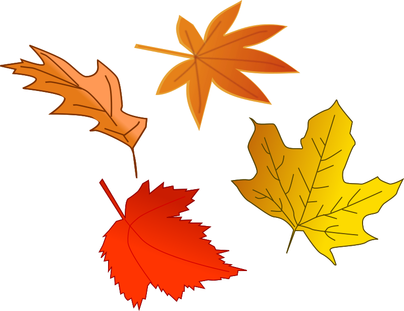 Leafs by inky2010 - Mixed Fall clip art.