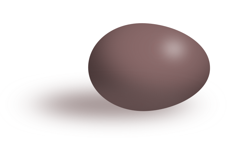 Brown egg by Tomas Sobek - Brown egg on flat white surface with soft 3-D shading and cast shadow