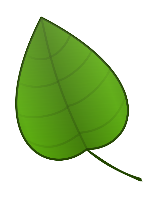 Leaf by carlitos - A simple green leaf.
