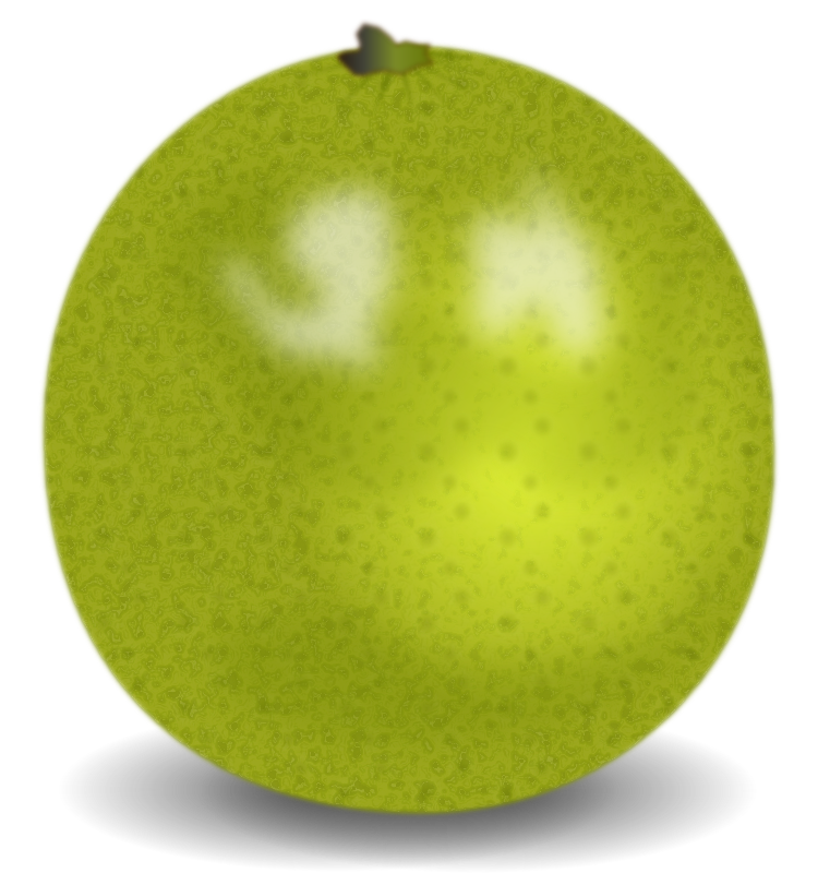 Lime by pawelf - A whole lime, which looks realistic in Opera and Fox, well enough in Chrome 5 and bad (cause there is no filter support) in Safari.