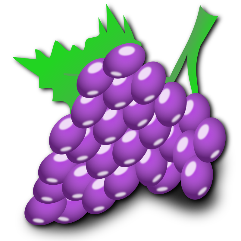 Grapes by nicubunu - grapes