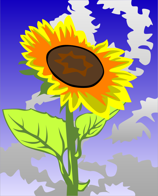Sunflower by Gerald_G