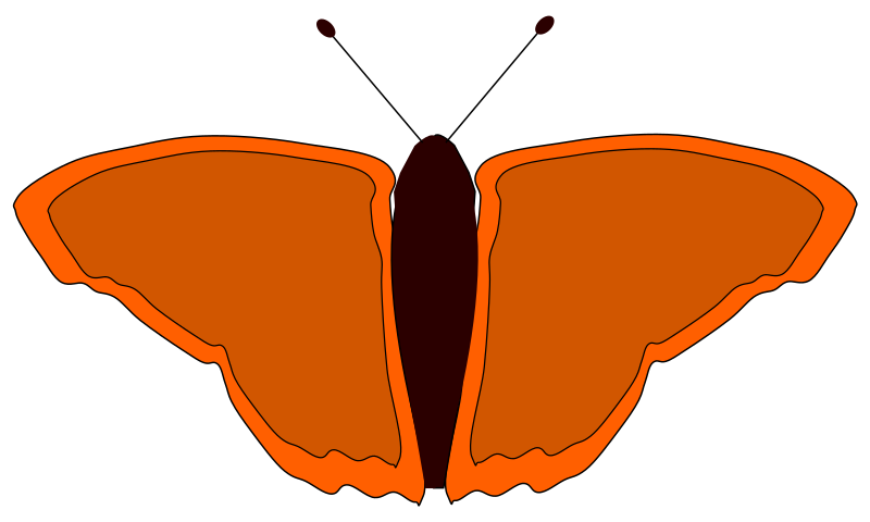 orange butterfly by redccshirt - orange butterfly