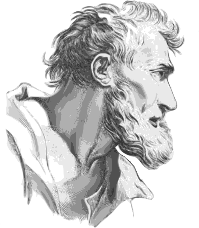 Face expression man by dominiquechappard - This clipart is an interpretation from the original drawing from Charles Lebrun published in 