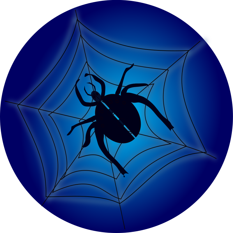 Spider_on_web by netalloy - A spider on a web over a blue background.