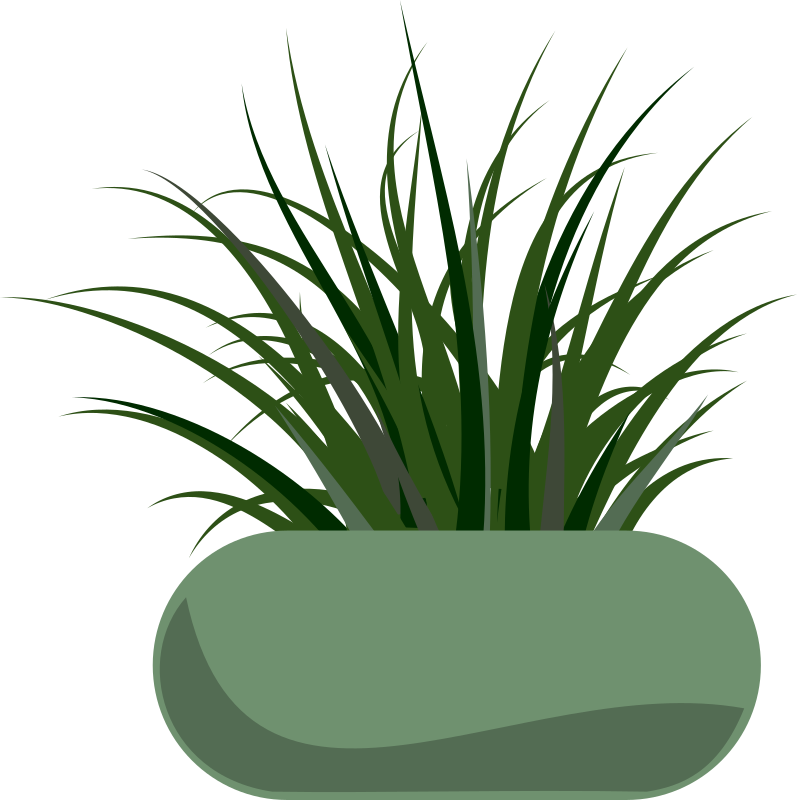 Potted Grass by stevepetmonkey - Grass planted in a modern planter.