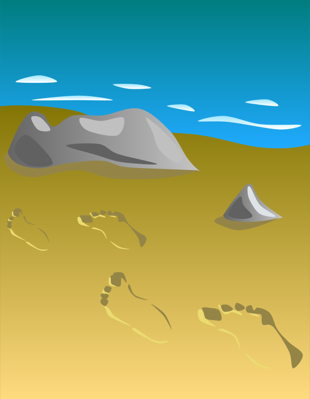 Footprints in sand by Gerald_G - To fulfill a request.