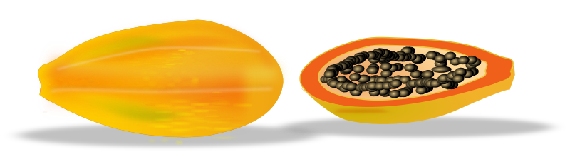 papaya sliced by netalloy - Fruits clipart by netalloy