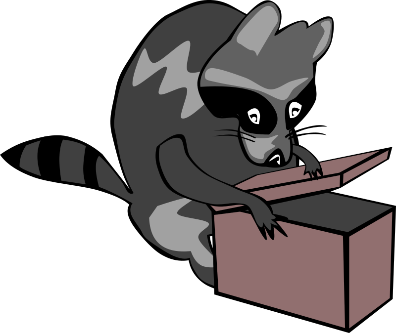 Raccoon opening box by Gerald_G -