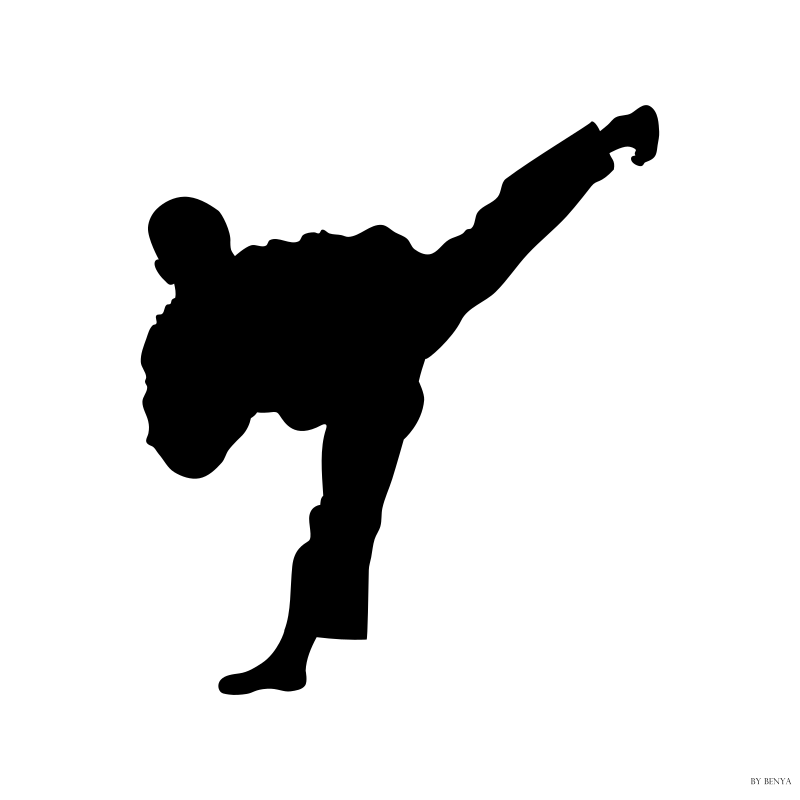 Silueta Tae Kwon Do by benya82