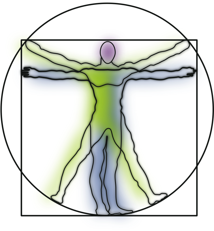 Vitruvian Man by harmonic - Vitruvian Man... ish... I use him in presentations