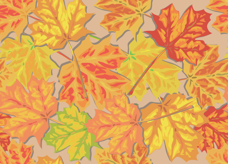 Fall Leaves by eady - Colored maple leaves scattered on a surface.  This is tileable, so it can be used as a background or wallpaper.