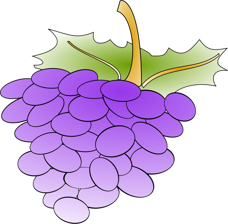 grapes by Anonymous