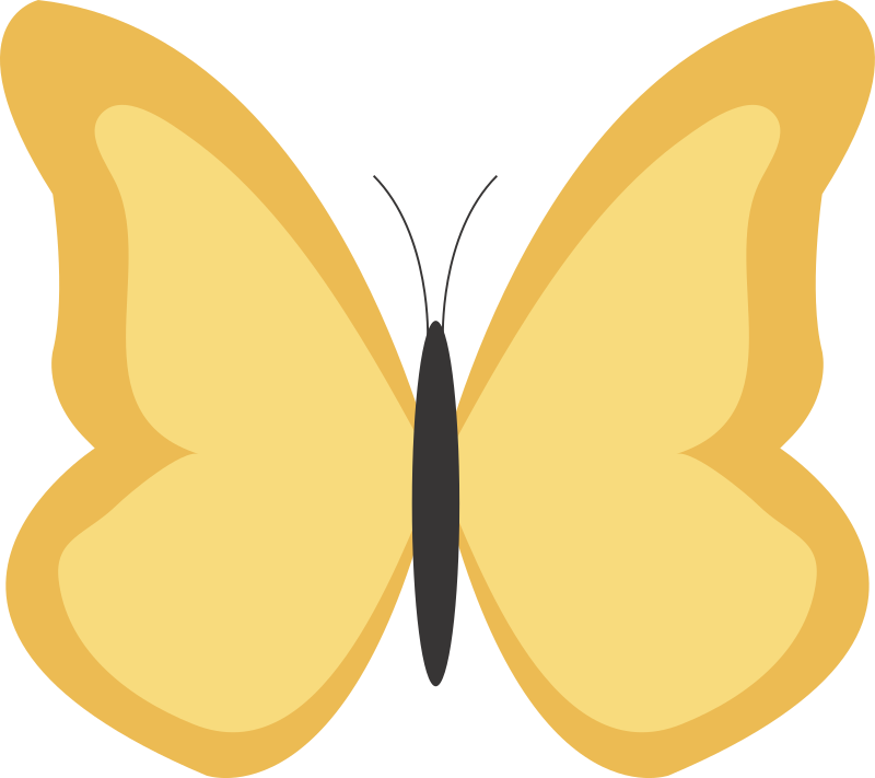 Butterfly1 by dcatcherex - Butterfly1