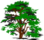 simple vector tree Thumbnail