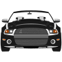 Mustang Shelby GT500 />