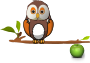 Owl on branch Thumbnail