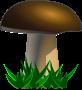 Mushroom, grybas, food