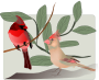 Two Birds Background Thumbnail