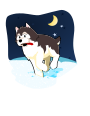 Husky playing in the snow />