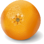 orange apelsinas Thumbnail