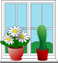 Window with potted plants