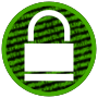 Digital Encryption Icon