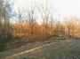 Missouri Nature 2