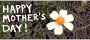 Happy Mother&#039;s Day banner with flower />