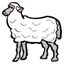 sheep - lineart