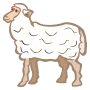 sheep - coloured