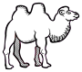 camel - lineart