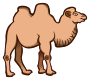 camel - coloured