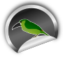 Toucanet on silver sticker