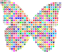 Colorful Butterfly Fractal