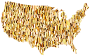 Gold Low Poly America USA Map