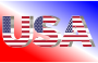 USA Flag Typography Shiny Pearl