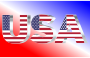USA Flag Typography Silver