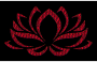 Vermillion Lotus Flower 2