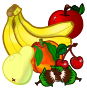 fruits - coloured