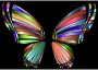 RGB Butterfly Silhouette 10 5