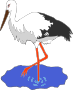 Kress's stork in a pond vectorized