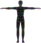 Prismatic Low Poly Human Male Wireframe
