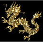 Gold Tribal Asian Dragon Silhouette