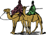 Two Camel Guys - Colour