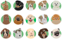 Dog Breeds Icons