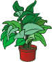 Potted plant 11 Thumbnail