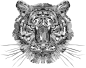 Geometric Tiger Head Grayscale Thumbnail