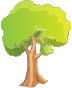 Pleasant Greenery Scene Tree Isolated